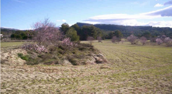 Rustic Ground - Sale - Alcoy - mountains