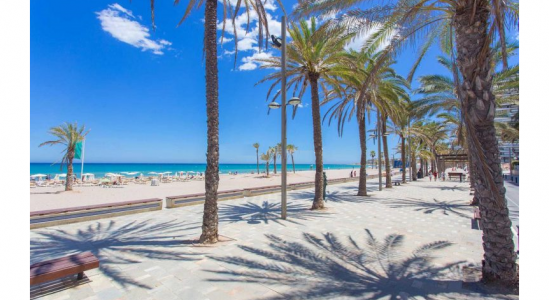 Flat - Long Term Rentals - Alicante - Beach